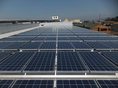 240wの太陽電池パネルを208枚設置